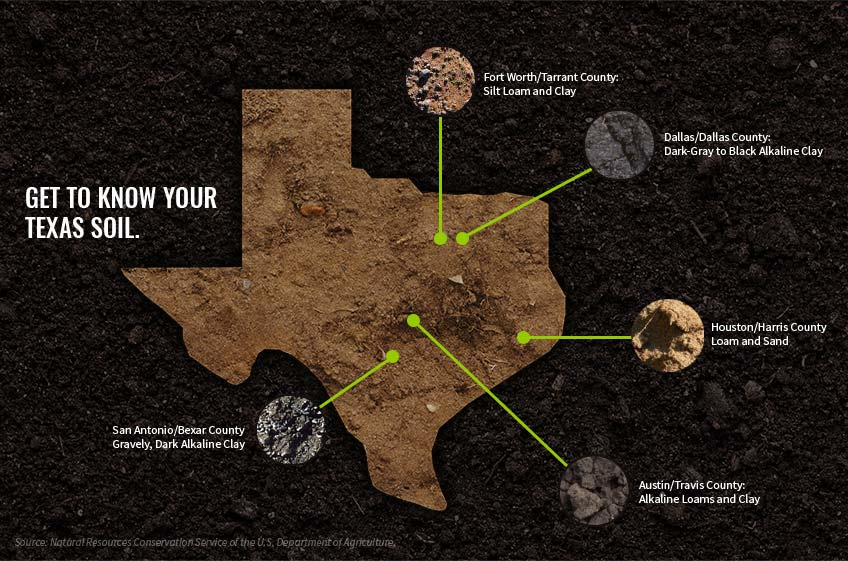Clay soil Texas soil